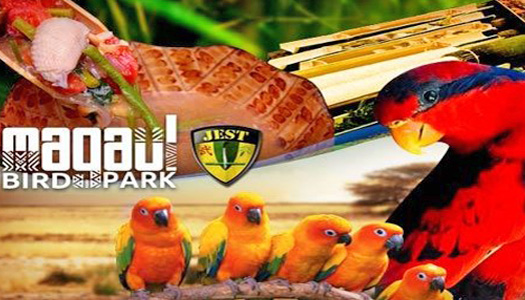 Magaul Bird Park at Jest Camp